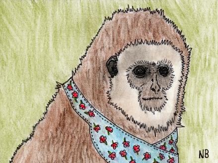 """""""Monkeys don't wear aprons! Read Nailsbails!"""""""